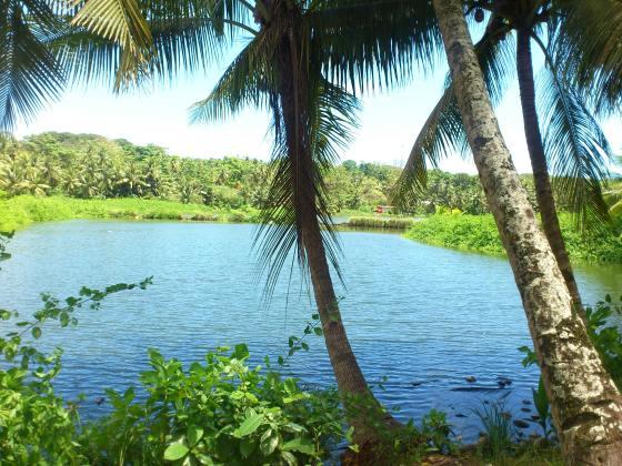 A lagoon on Nauru